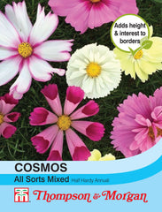 Cosmos All Sorts Mixed