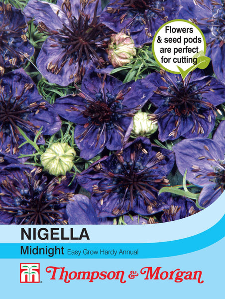 Nigella Midnight