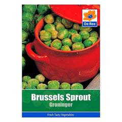 Brussels Sprouts Groninger