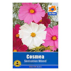 Cosmea Sensation Mixed