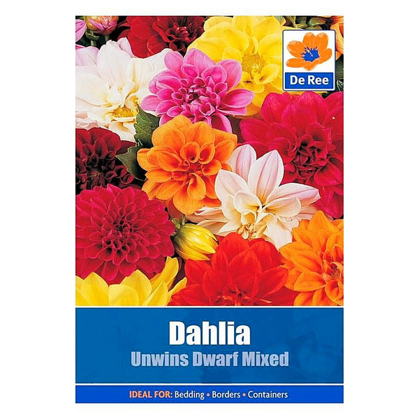 Dahlia Unwins Mixed