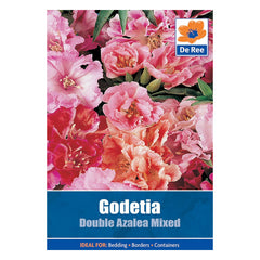 Godetia Double Azalea Mixed