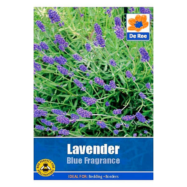 Lavender Blue Fragrance