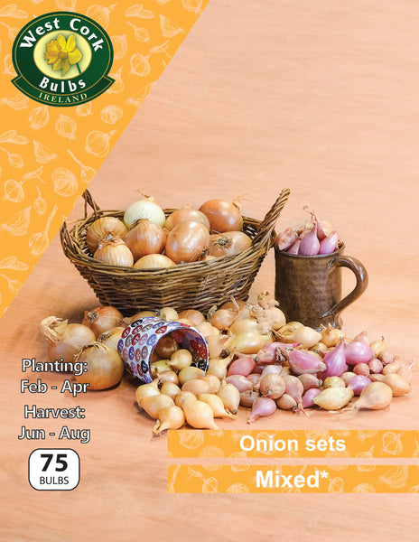 Onion sets Mixed 75 bulb