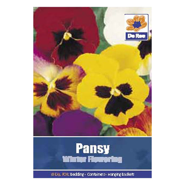 Pansy Winter Flowering