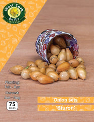 Onion Sets - Sturon (Spring Planting)