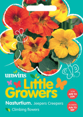 Unwins Little Growers Nasturtium Jeepers Creepers