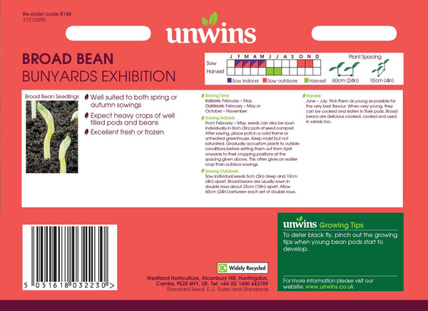 Unwins Broad Bean Bunyards Exhibition
