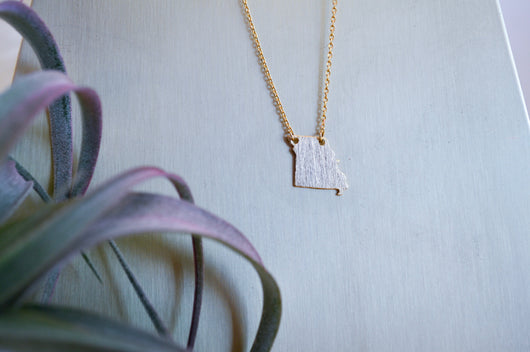 Dainty Necklace - Missouri Pride in Gold