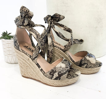 Charlotte Wedges in Python