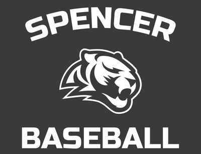 Car Decal | Tigers Baseball