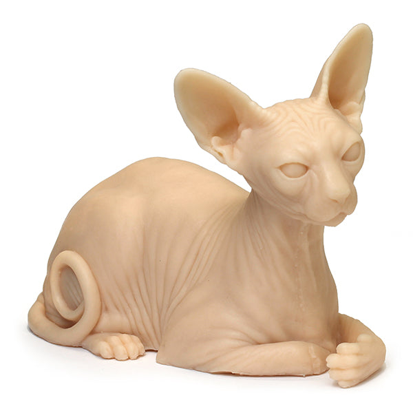 Tattooable Sphynx Cat