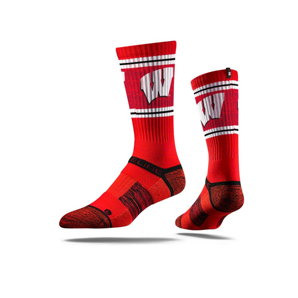 University of Wisconsin Badgers Randall Red Full Photo
