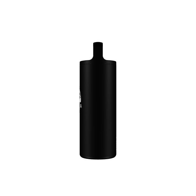 Patagonia Since 1973 WM 16oz Insulated Bottle