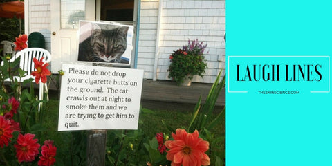 smoking cat_funny_signs