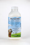 Pure, fresh, pasteurized camel milk, 12 Pack Pints. $12/Pint $144.00 FRESH