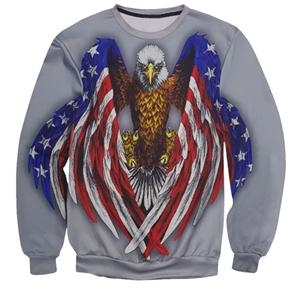 The Gray American Eagle Sweater