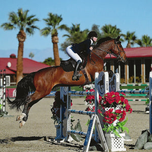 Zoe Conlee, Premium Hunter/ Jumper Show Instructor and Trainer