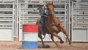 BRL Equine Support for barrel horse