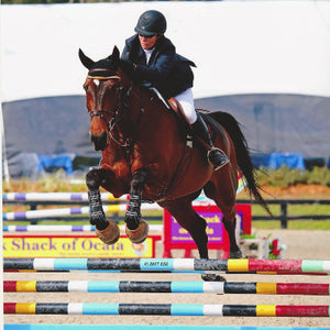 Lisa Clements, Show Jumper