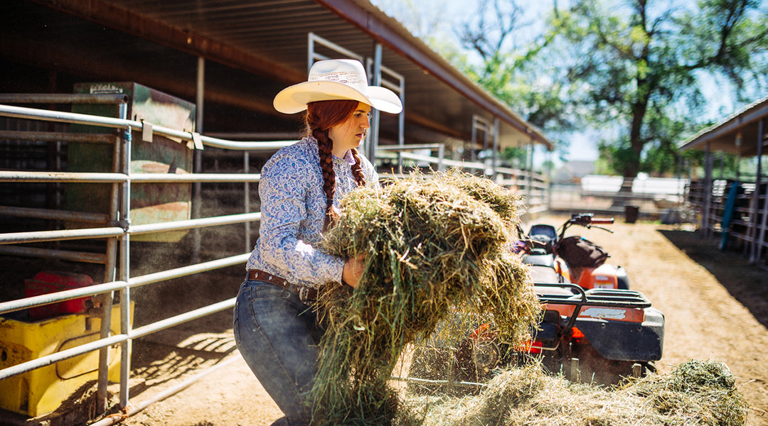 cowgirl bailing hay outside stalls