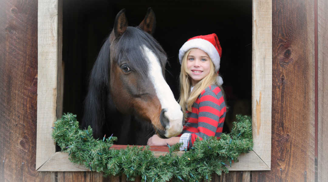 girl with horse at christmas