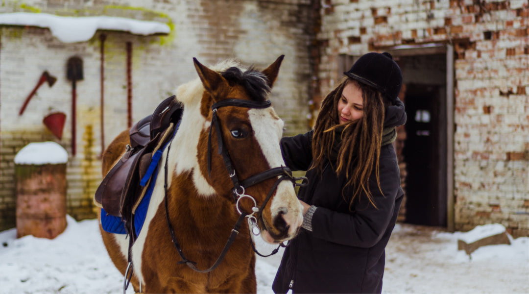 woman caring for horse in winter