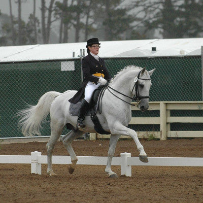 "Jennifer Roth, USEF ""S"" Dressage Judge and FEI Trainer"