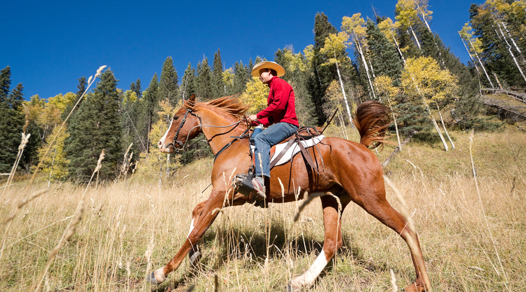 man riding barrel horse on mountain trail