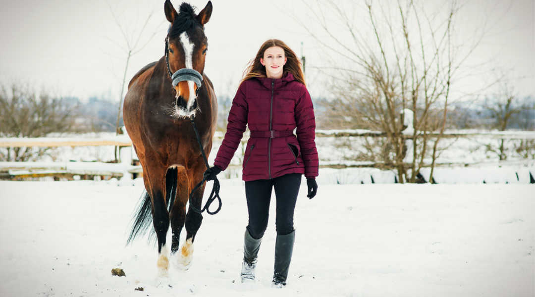 prevent winter colic in horse