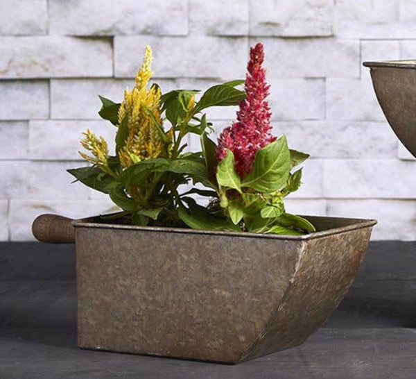 Scoop Planter