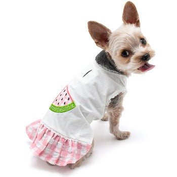 Dogo Watermelon Dog Dress-Paws & Purrs Barkery & Boutique
