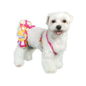 Pooch Outfitters St. Martin Dog Bikini-Paws & Purrs Barkery & Boutique