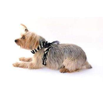 The Dog Squad Zebra Parisian Corset dog Harness-Paws & Purrs Barkery & Boutique