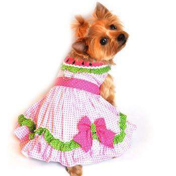 Doggie Design Watermelon Dog Harness Dress-Paws & Purrs Barkery & Boutique