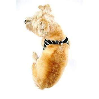 The Dog Squad Zebra Starlet Step In Ultra Suede Dog Harness-Paws & Purrs Barkery & Boutique