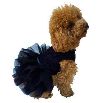 The Dog Squad Fufu Tutu Black Dog Dress-Paws & Purrs Barkery & Boutique