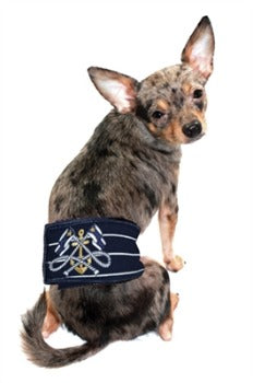 Hip Doggie Nautical Belly Dog Band-Paws & Purrs Barkery & Boutique