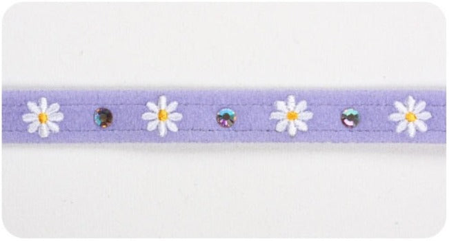 Susan Lanci Daisy Black Small Dog Collar-Paws & Purrs Barkery & Boutique