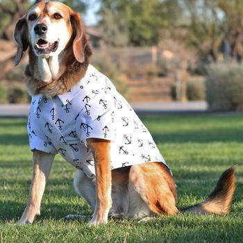 Doggie Design Hawaiian Camp Dog Shirt-Anchors Away-Paws & Purrs Barkery & Boutique