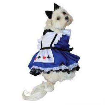 Anit Alice Dog Halloween Costume Dress-Paws & Purrs Barkery & Boutique