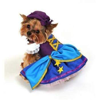 Gypsy Princess Dog Halloween Costume