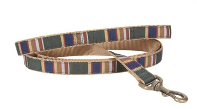 Badlands National Park Hiker Collar & Leash