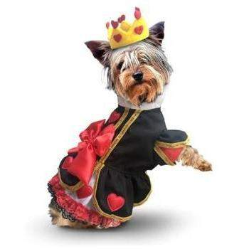 Pampet Puppe Love Big Bow & Hearts Dress Dog Halloween Costume-Paws & Purrs Barkery & Boutique