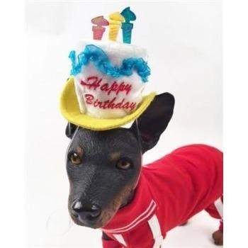 Happy Birthday Hat With Candles For Dogs