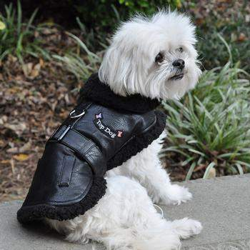 Top Dog Flight Harness Coat - Black.