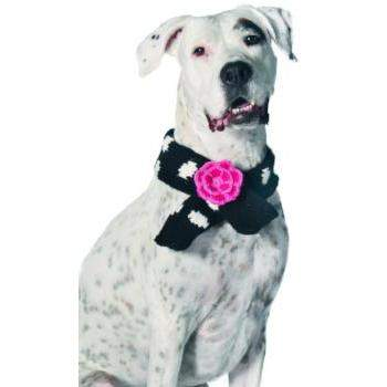 Chilly Dog Black Polka Dot with Flower Wool Dog Scarf-Paws & Purrs Barkery & Boutique