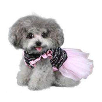 Pooch Outfitters Caroline Party Dog Dress - Paws & Purrs Barkery & Boutique