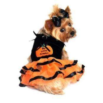 My Little Pumpkun Tutu Embroidered Dog Dress