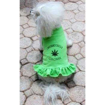 Daisy & Lucy Organically Grown Flounce Dog Dress-Paws & Purrs Barkery & Boutique